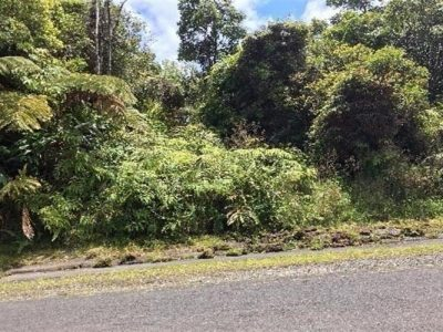 A beautiful 1 acre lot in Kaumana – Priced to Sell!