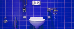 The Most Common Toilet Clogs