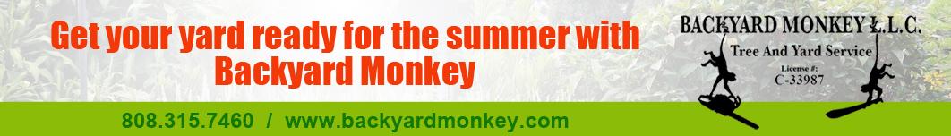 Backyard Monkey