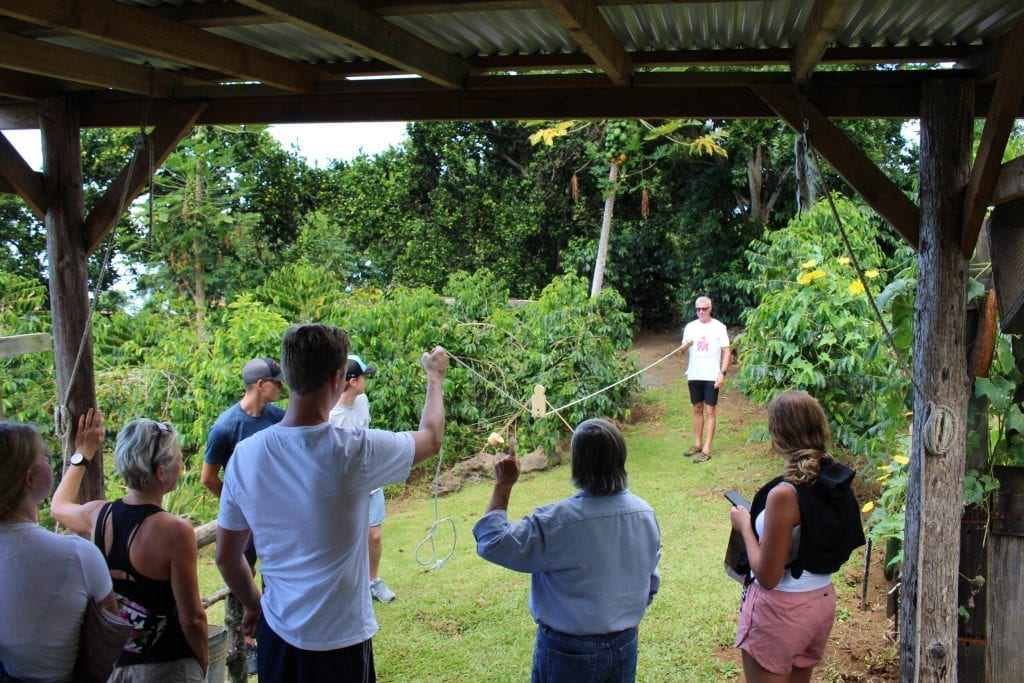 Visitors participate in an activity with Kona Historical Society