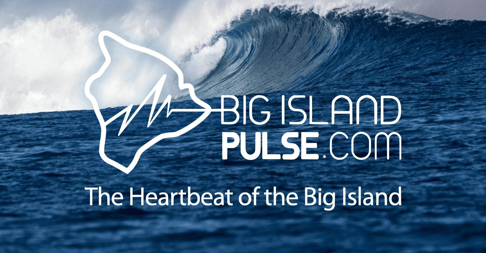 Big Island Hawaii Pulse logo on wave