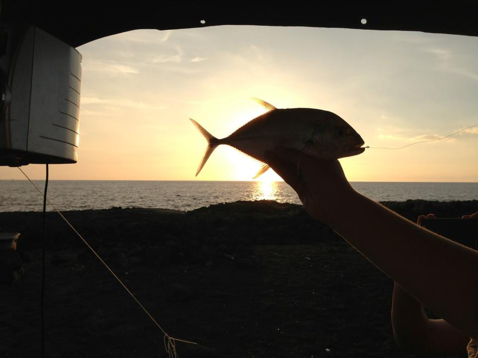a hand holds up a fish against the sunset after fishing in Kona