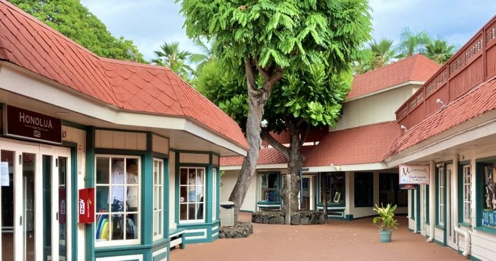 Kona Marketplace's small businesses with no customers