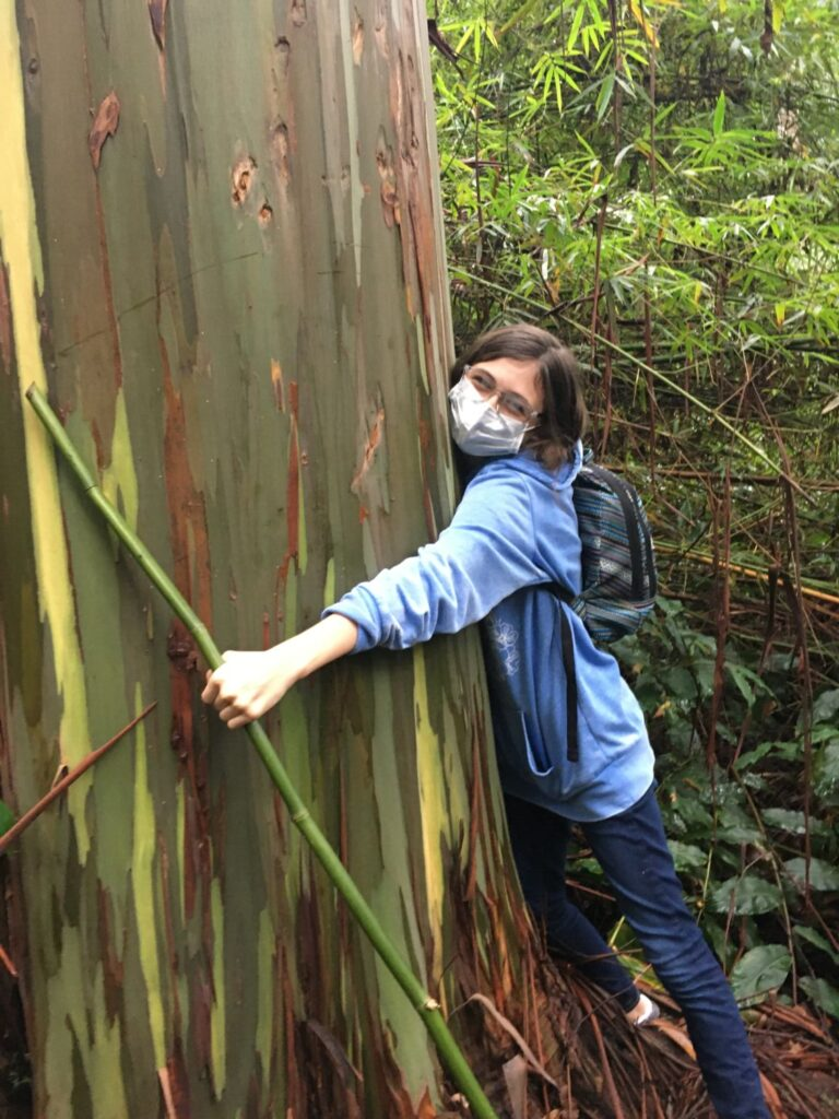 A child in a mask hugs a rainbow eucalyptus tree as part of Hawaii Technology Academy's hands-on learning programs.