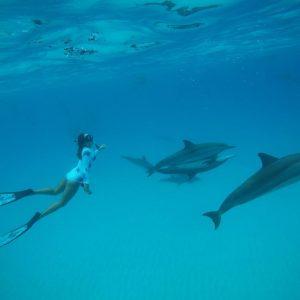 Kona Ocean Adventures